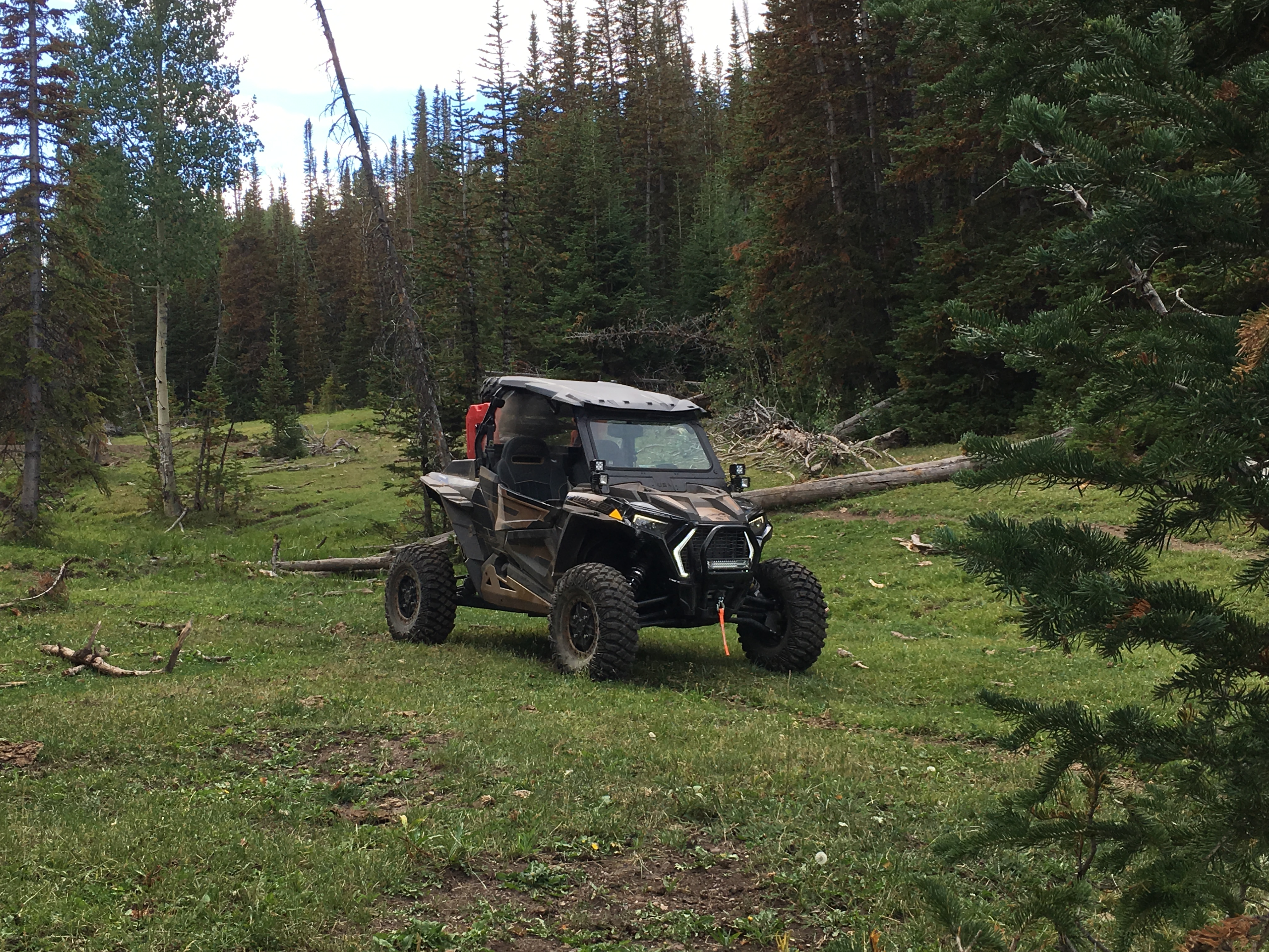 Click image for larger version  Name:RZR Litte Mountain Aug 2019.jpg Views:44 Size:3.49 MB ID:583948